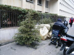 Poor Christmas trees are dotted around the pavements (still) many in gold plastic bags.