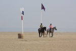 Horse training early morning on Deauville beach.