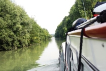 Some sections of the canal are narrow bursting with green - starting their autumn colours.
