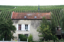 Mareuil lock-keepers house surrounded by grape vines.