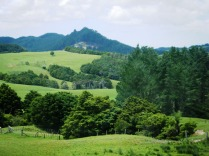 Hill country en route to Kaipara Harbour2