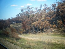 Canberra to Sydney railway line has many significant bends in it!