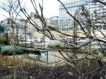 Port de l'Arsenal gardens 1