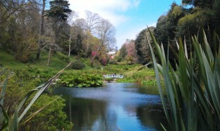 The exotic Trebah gardens at Mawnan Smith in Cornwall.